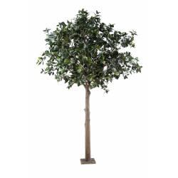Fruit artificial PLATINUM (camelia japonica tree)
