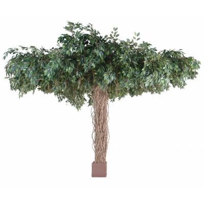 Ficus artificiel LIANES UMBRELLA