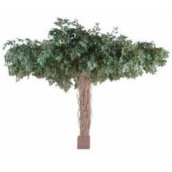 Ficus artificial VINES UMBRELLA