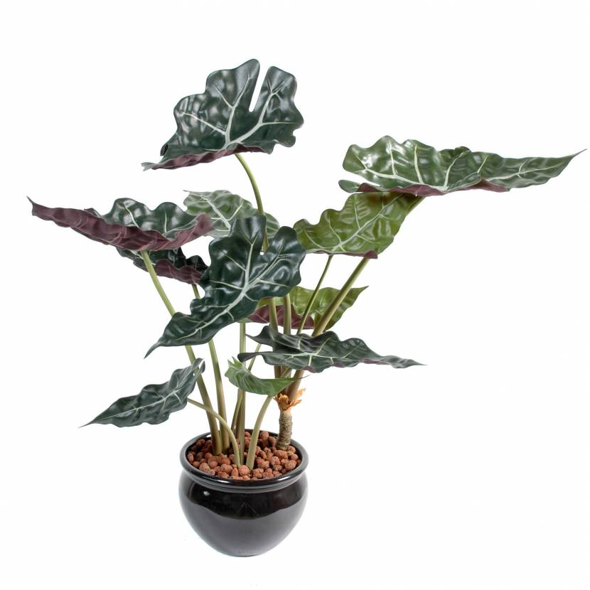 alocasia artificiel pot. Black Bedroom Furniture Sets. Home Design Ideas