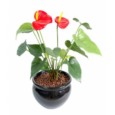 Anthurium artificiel 2fl