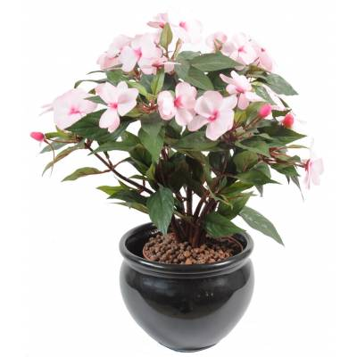 Impatiens artificielle PIQUET