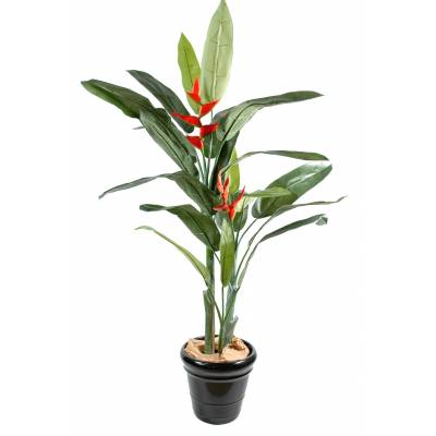 Heliconia artificial