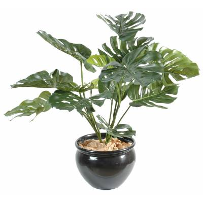 Philodendron artificiel GEANT*15