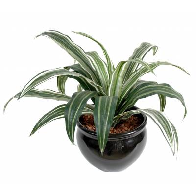 Dracaena artificiel WARNEKI 20F