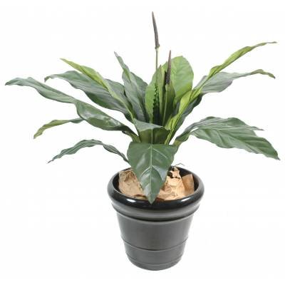Anthurium artificiel jungle king