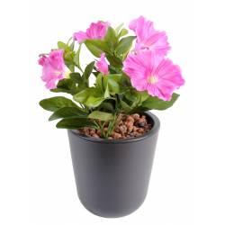 Petunia artificiel *7