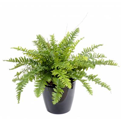 FERN Artificial BOSTON *42 IN POT