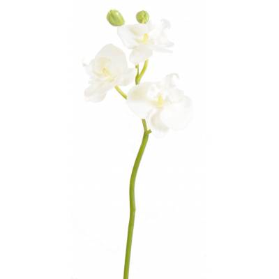 Phalaenopsis artificial MINI ORCHID