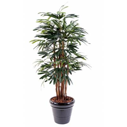 Palm tree artificial RHAPIS LADY