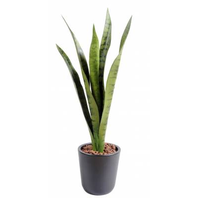 Sansevieria artificial PIQUET MM