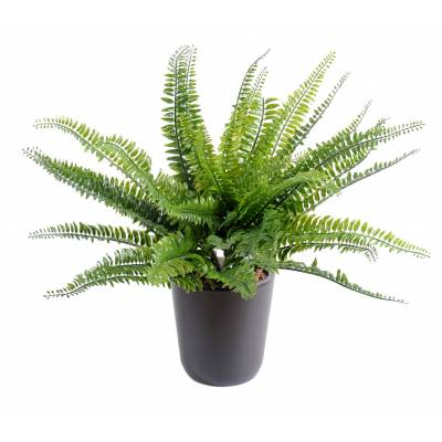 FERN artificial BOSTON PLAST