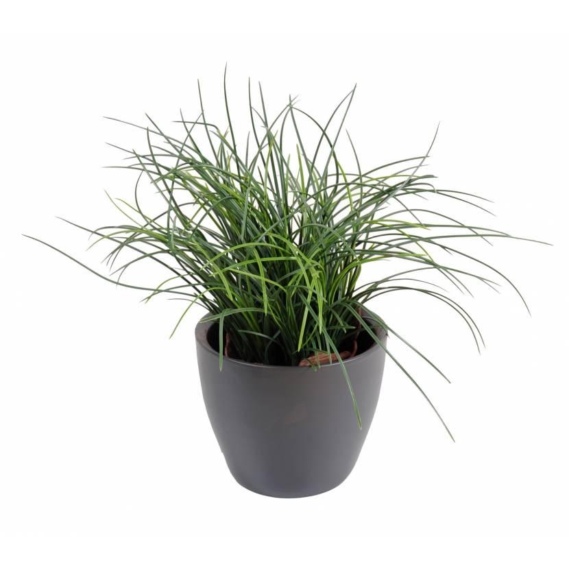 herbe artificielle fine pot. Black Bedroom Furniture Sets. Home Design Ideas