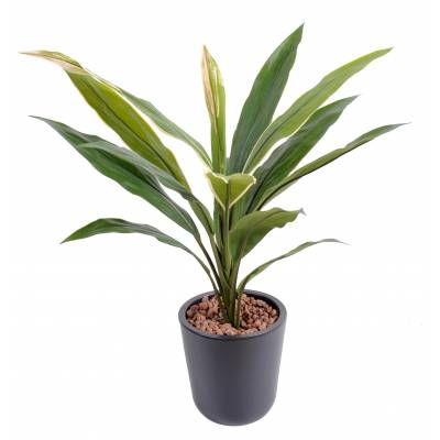 Dracaena artificiel CORDYLINE