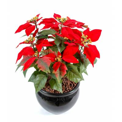Poinsettia artificiel*9