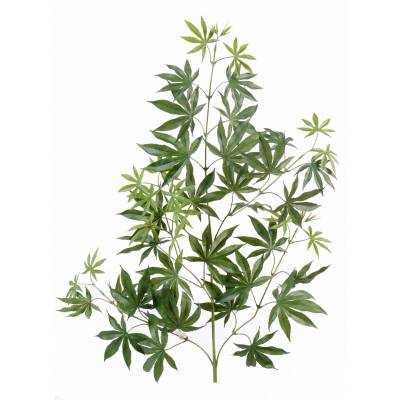 Aralia artificial new spray *44