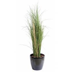 Artificial grass HONEY GRASS