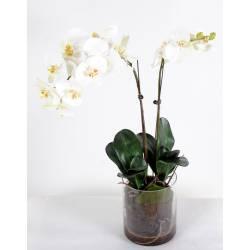 Phalaenopsis artificielle VASE ROND