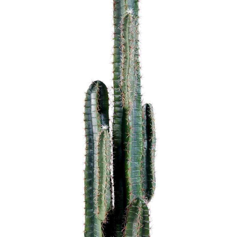 cactus artificiel finger. Black Bedroom Furniture Sets. Home Design Ideas
