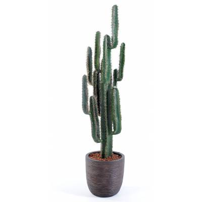 Cactus artificiel FINGER EN CAPI MARRON
