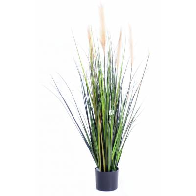 Carex artificial GF