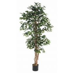 Ficus artificial MULTITRONCS