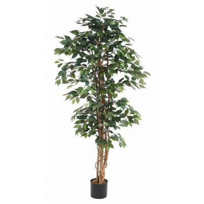 Ficus artificiel MULTITRONCS