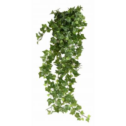 Ivy-artificial*504