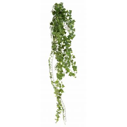 Ivy-artificial*801