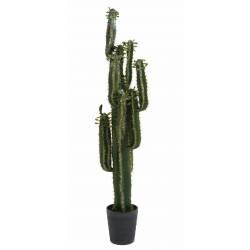 Artificial Cactus FINGER