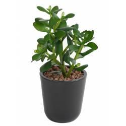 Crassula artificiel JADE PLANT 35 CM
