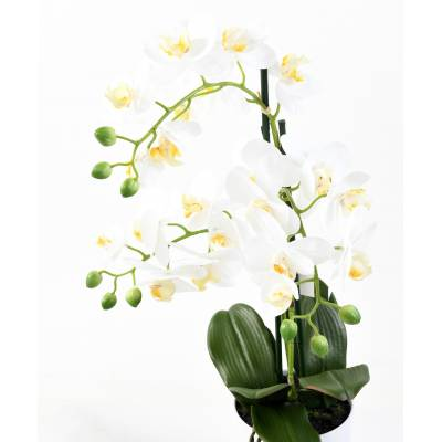 PHALAENOPSIS artificielle POT*3