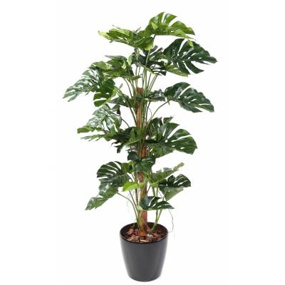 Philodendron artificiel TUTEUR COCO NEW