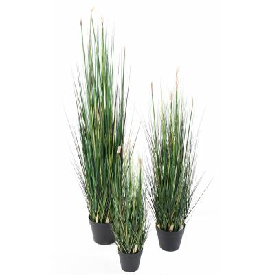 Presle Grass artificial