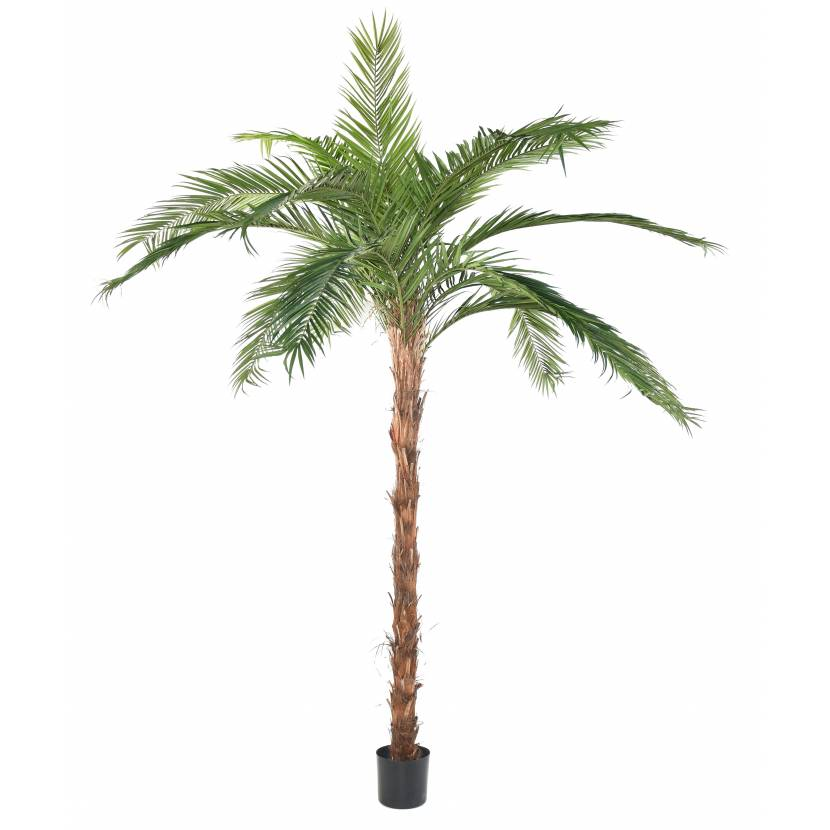 Palmier artificiel phoenix canariensis for Palmiers artificiels