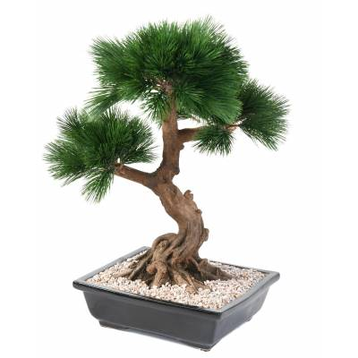 Bonsai, artificial PINE tree IN the CUP