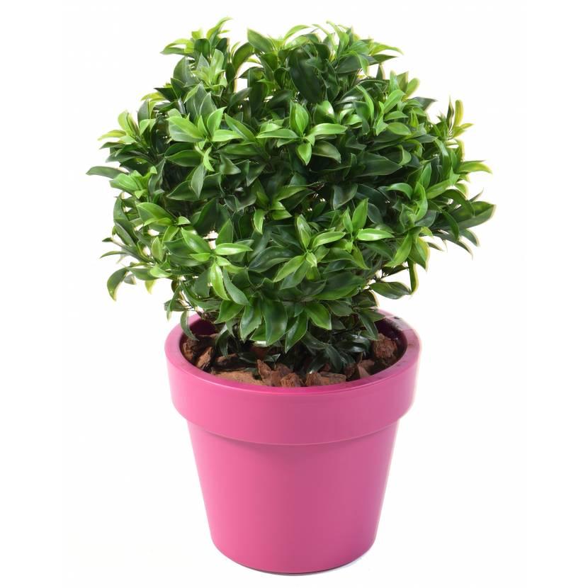 Laurier plast buisson artificiel en pot green basic top planter - Laurier fleur en pot ...