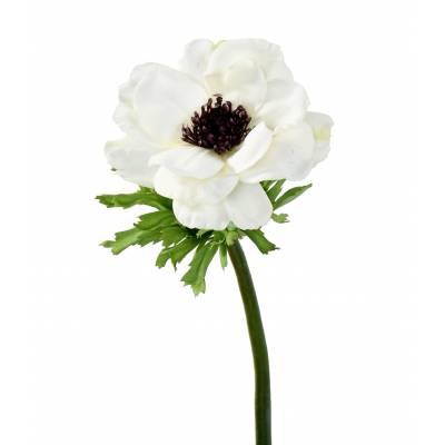 ANEMONE Artificial