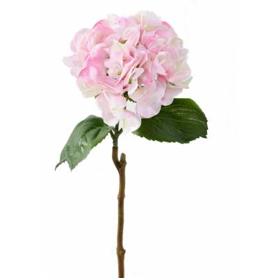 HORTENSIA ARTIFICIEL 3D