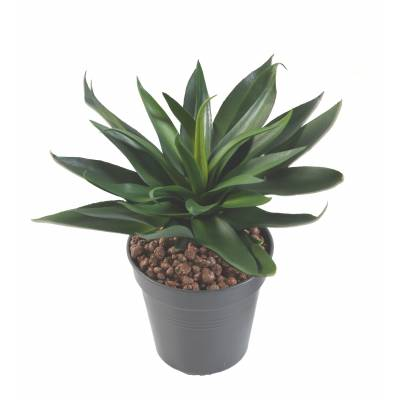 AGAVE ARTIFICIELLE 36