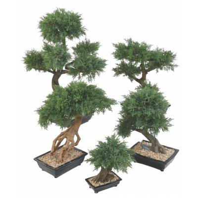 BONSAI JUNIPERUS ARTIFICIEL EN COUPE