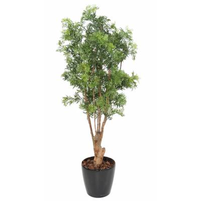 Aralia artificiel MING NITIDA TN UV 180