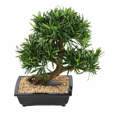 Bonsaï artificiel podocarpus en coupe
