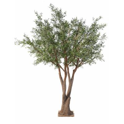 OLIVE TREE NC artificial