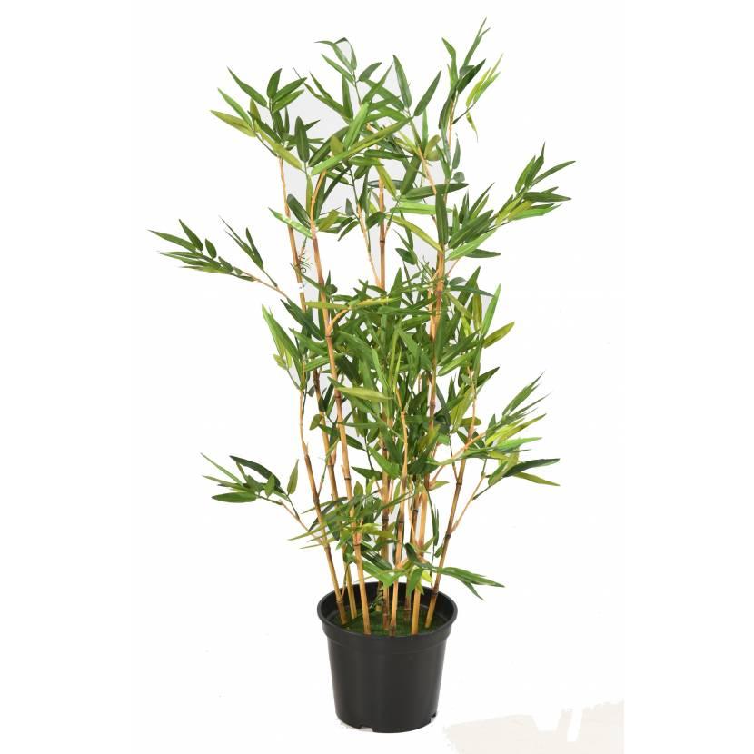 Bambou 90 cm vert espace for Espace vert