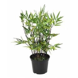 Bambou artificiel TB