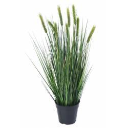 Wheat artificial