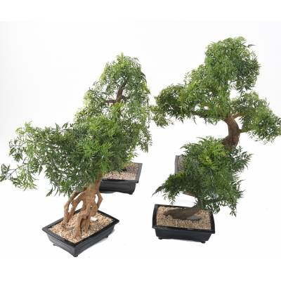 BONSAI artificiel ARALIA EN COUPE