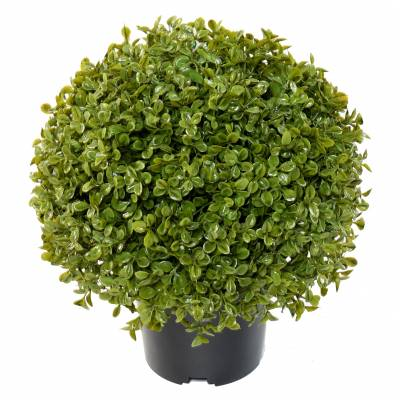 BOXWOOD BALL STK POT Artificial