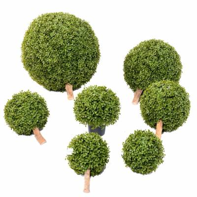 BOXWOOD BALL STK Artificial